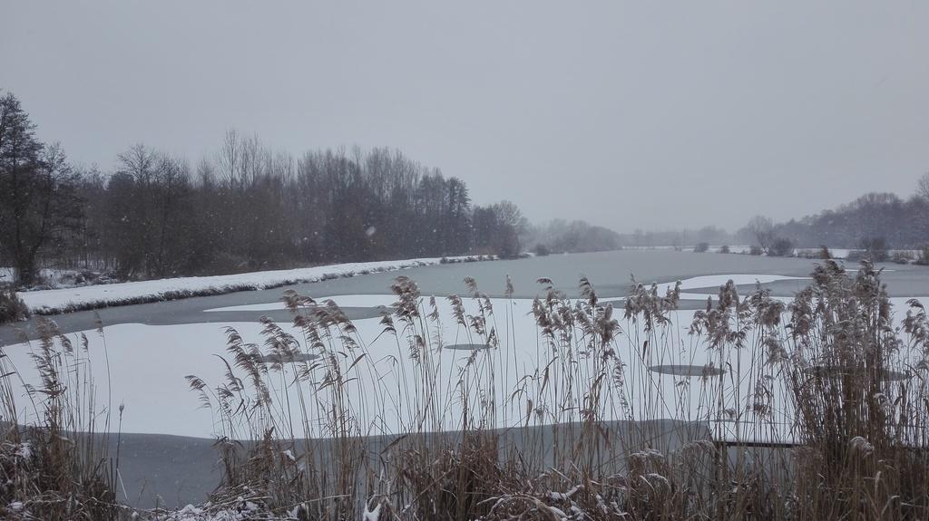 A csónakázó tó vékony jegénmár megült a hóréteg