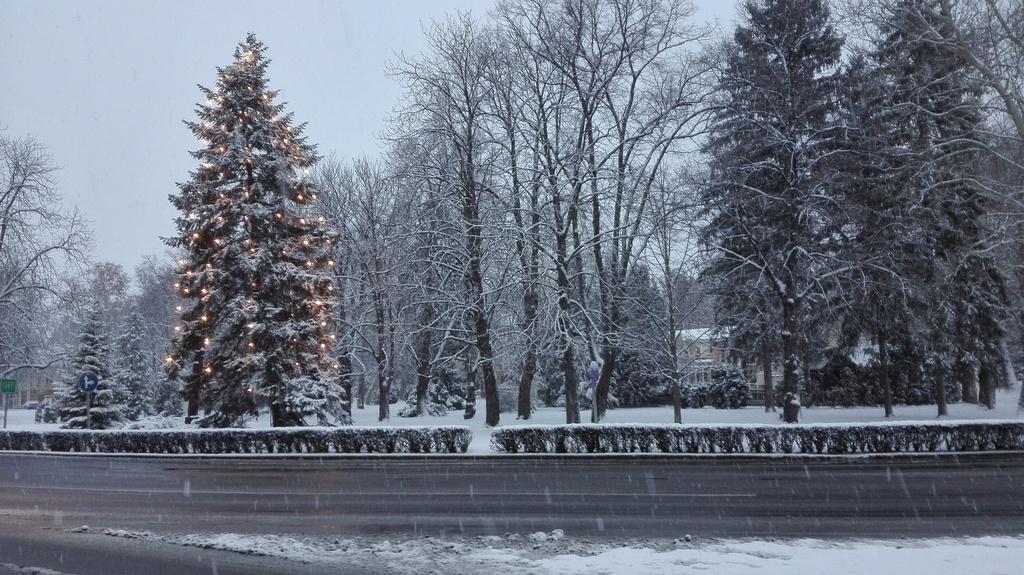 Nem volt fehér a karácsony, dea parkban így is ünnepi a hanagulat