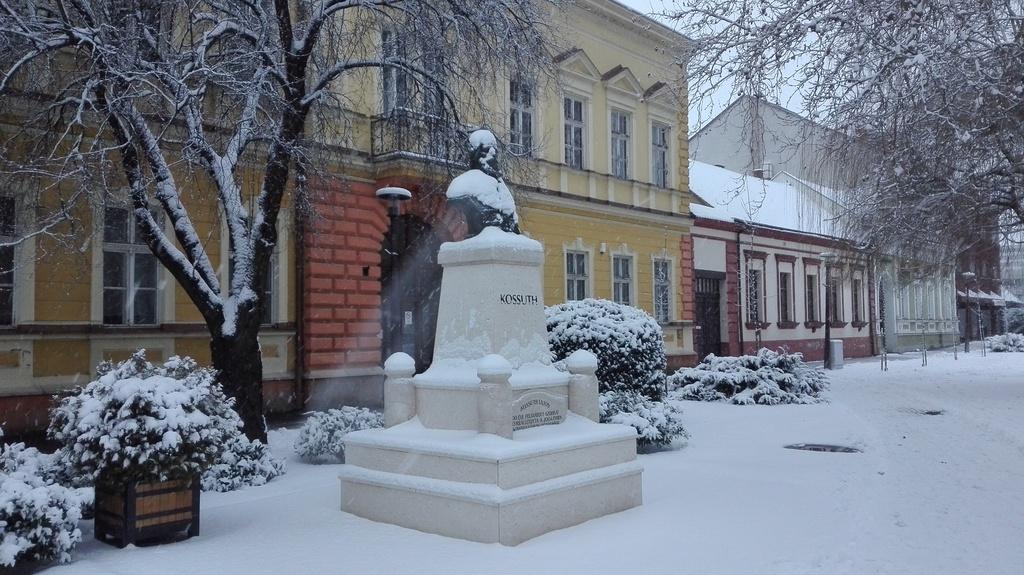 Kossuth Lajos szakálla megőszült