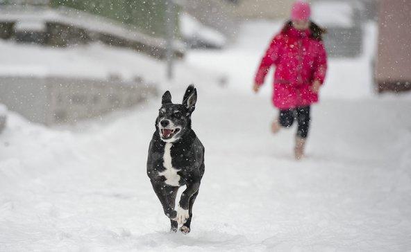Hófúvás miatt adtak ki figyelmeztetést Somogyra