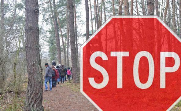 Erdőlátogatási tilalom február végéig