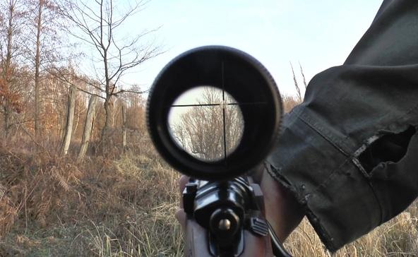 Halálos vadászbaleset történt Somogyban