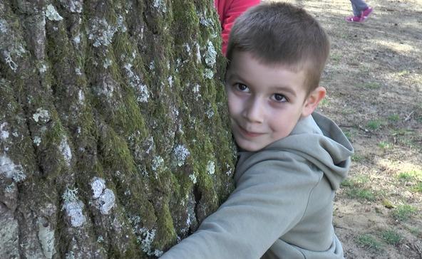 """Átölelték a fákat: """"Tanulj, hogy szerethesd az erdőt!"""""""