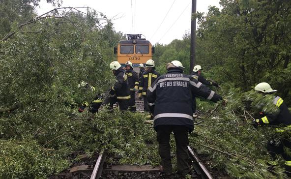 Fa dőlt a sínekre Somogyszob és Bolhás között