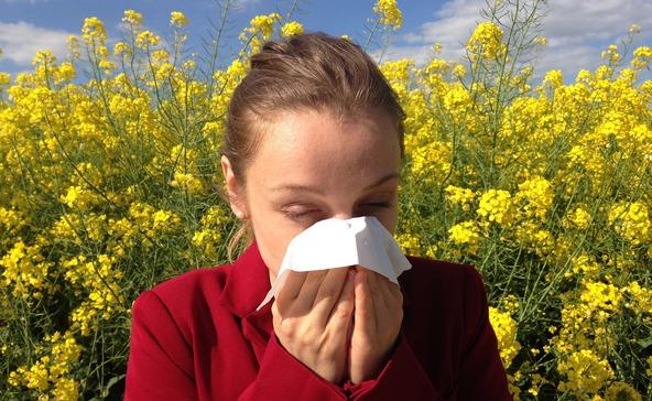 Enyhe volt a tavaszi pollenszezon