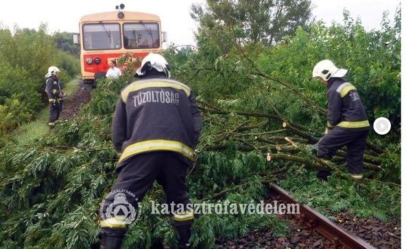 A viharban fa dőlt a vasúti sínre