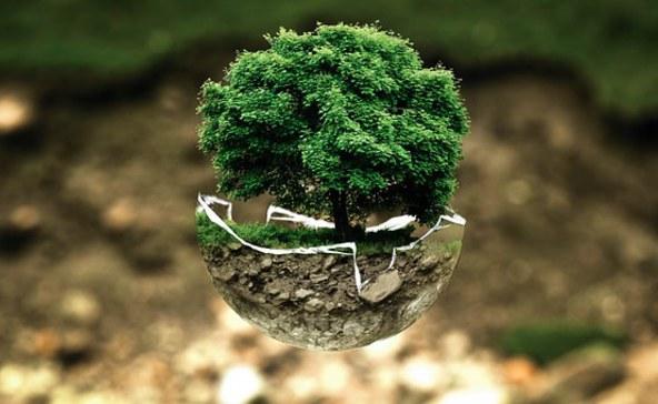 A túlfogyasztás napja: úgy élünk, mintha 1,7 Föld állna rendelkezésünkre