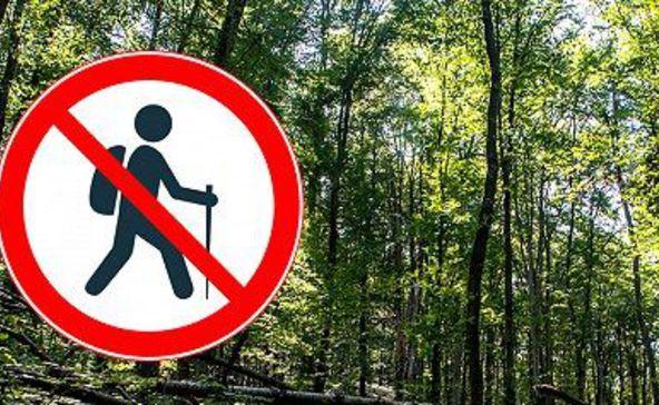Erdőlátogatási tilalom kezdődik