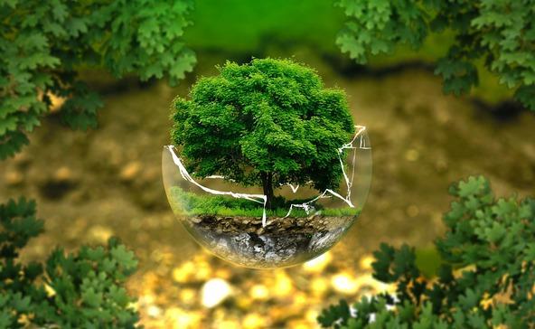 Öt tipp a Földünkért világnapon