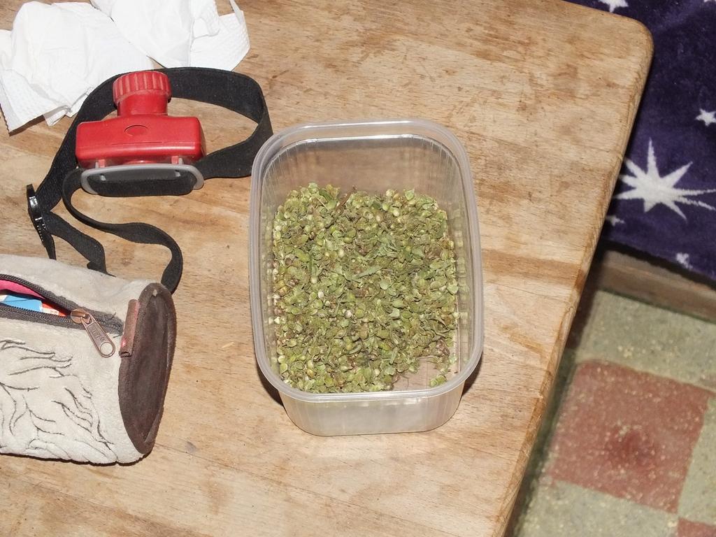 A razzia több száz gramm kábítószer, és annak fogyasztására és termesztésére szolgáló eszközt lefoglalásával ért véget