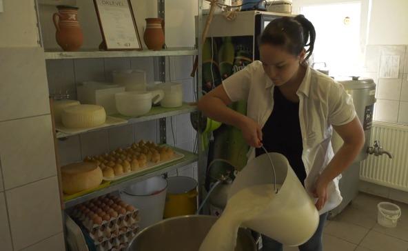 A sajtérmesek tejben-vajban fürösztik Nagyatádot