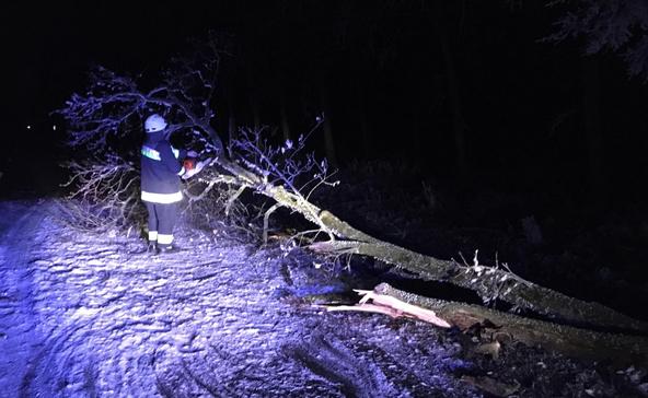 Fák dőltek ki, ágak szakadtak le: zúzmarával támadott a tél