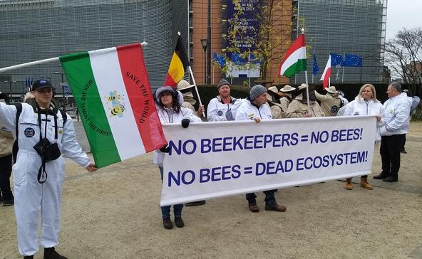 Pancsolt kínai mézzel és mérgekkel fojtják meg az európai és magyar méheket
