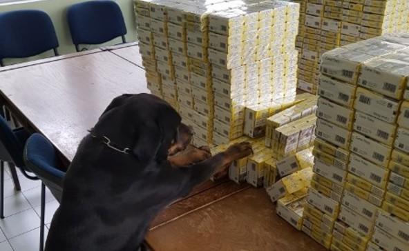 Kétezer doboz cigire bukkant Boo