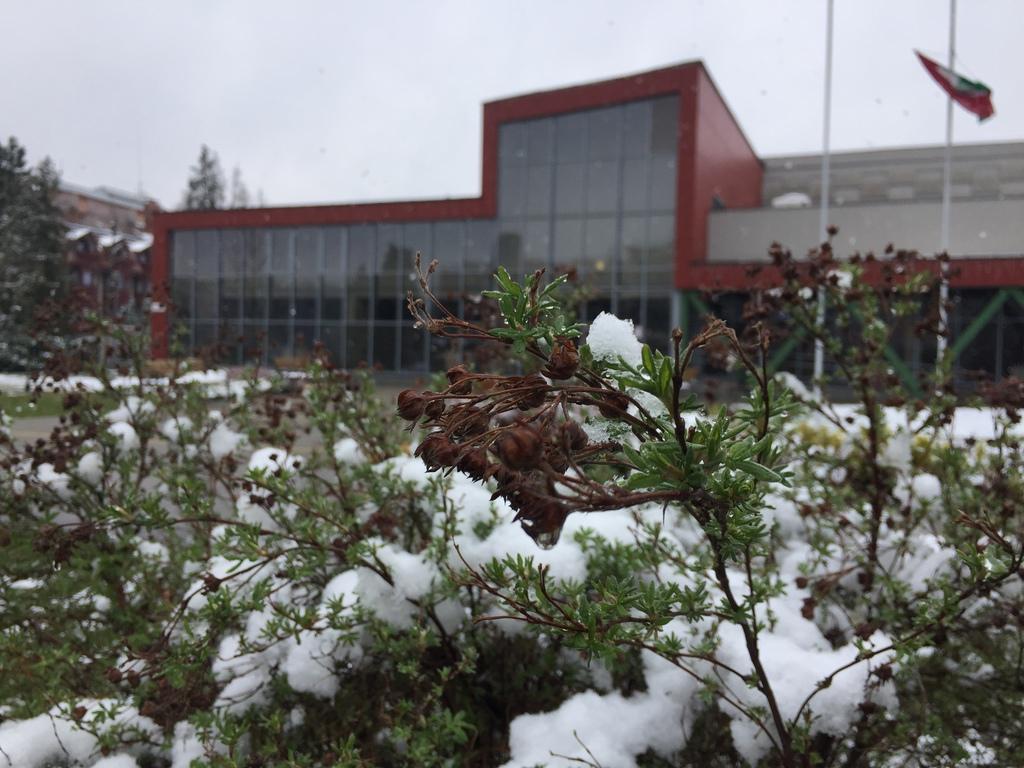 Márciusi hóesés