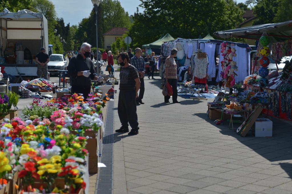 Sok a virág a piac kínálatában az ültetési szezon miatt