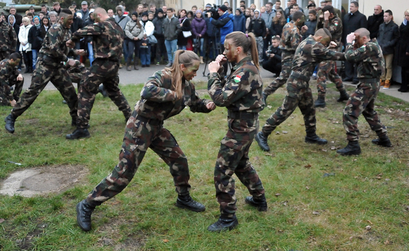 8-10 katonai iskolát akar a kormány