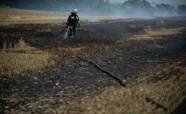 Két alkalommal is vágástéri hulladék égetése miatt szabadult el tűz a hétvégén