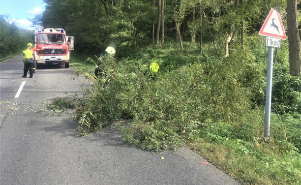 Égett egy autó, fának csapódott egy másik