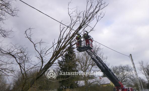 Megyeszerte okozott károkat a tegnapi szél