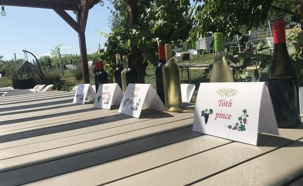 Összefogtak a borászok: feltámasztják a böhönyei szőlőtermesztést