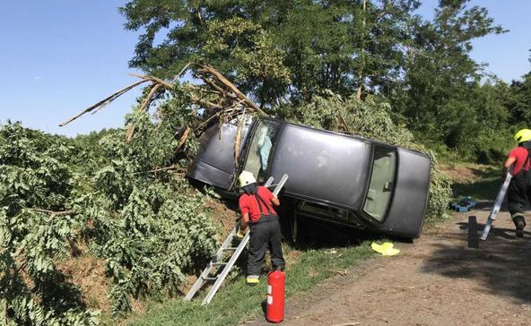 Fának csapódott egy autó