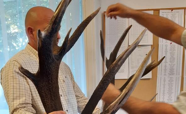 Világranglista 20. helyezett bikát ejtettek Somogyban