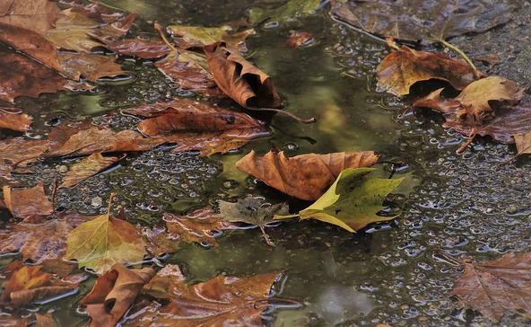 Holnap valóban beköszönt az ősz
