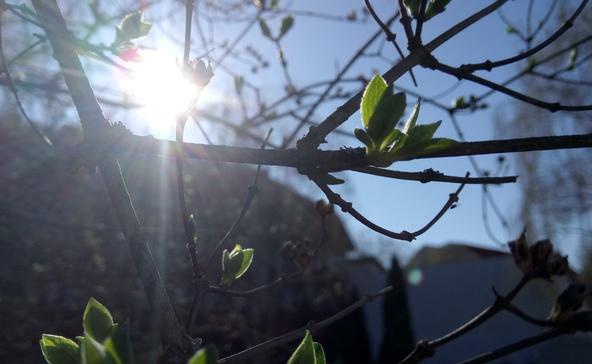 Vasárnap berobban a tavasz