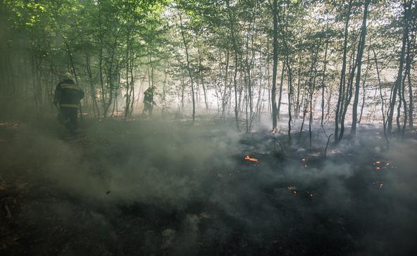 Ismét országos tűzgyújtási tilalmat rendeltek el