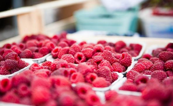 Eltűnhetnek a kedvenc bogyós gyümölcseink
